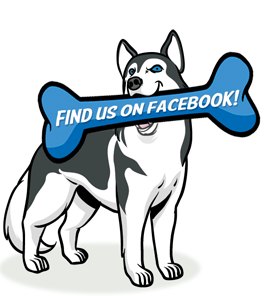 Facebook Khanright Dog Training